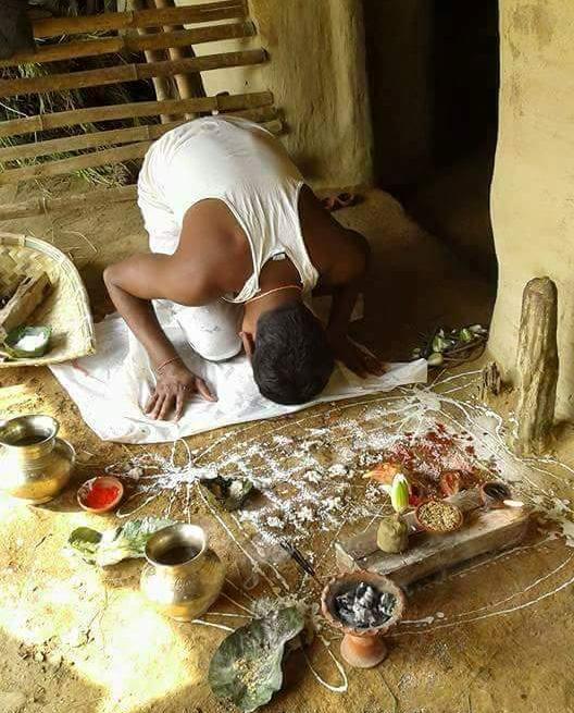 বাঁদনা-পরবে গো-বন্দনায় মেতেছে ঝাড়গ্রাম