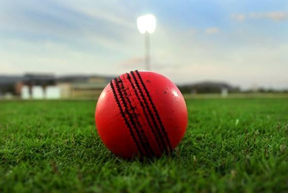 ইডেনে গোলাপি বলে টেস্ট ম্যাচ ঘিরে উন্মাদনা তুঙ্গে ক্রিকেট প্রেমীদের মধ্যে