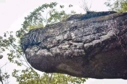 সম্প্রতি আবিষ্কৃত নাকা গুহা, থাইল্যান্ড